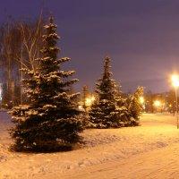 Зимнее утро :: Мария Кухта