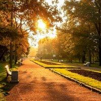 Утро Екатерингофского парка :: Валерий Смирнов