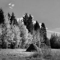 Осенний уголок :: Валерий Талашов