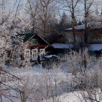 Морозное утро :: Надежда Бахолдина