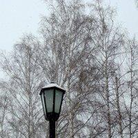 Снег идёт 1 марта. :: Мила Бовкун