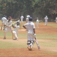 тренировка  игроков в крикет :: maikl falkon