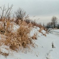 Зимнее... :: Валерий Молоток