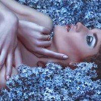 Lilac Tale :: Ruslan Bolgov