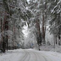 сказочно зимняя весна :: Yana Odintsova