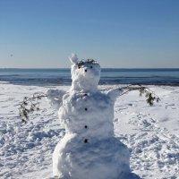 Снежный медвеженок :: veera (veerra)