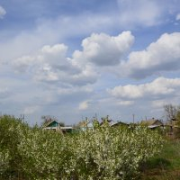 Весна в деревне. :: Виктор ЖИГУЛИН.