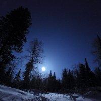 В холодном свете :: Сергей Лучкин