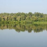 Ранее утро на реке :: Сергей Тагиров
