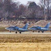Як - 130, взлет пары :: Игорь Сикорский