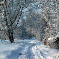 Снег :: Александр Лихачёв