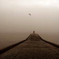 Туман :: Василий Проненко
