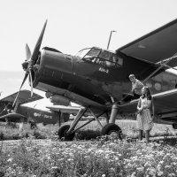первым делом -самолеты :: Лилия Винер