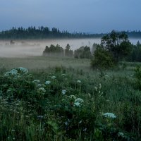 Короткие летнии ночи :: Сергей Зоммер