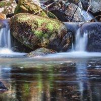 Лесной ручей :: Dmitriy Kulnev