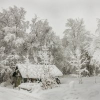 Вот моя деревня . . . :: Наталья Иванова