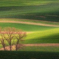 / Весна в Южной Чехии / :: Влад Соколовский