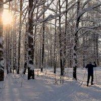 Навстречу зимнему рассвету :: Николай Белавин