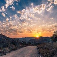 Дорога домой... :: Nyusha