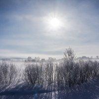 Туманная деревенька :: Иван Кононов