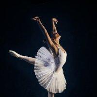 Балетная птичка :: Александр Амеличкин