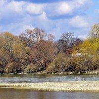 На реке Кубань :: Игорь Сикорский