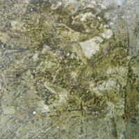 Февраль на каменном полу...... :: Святец Вячеслав