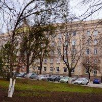 Весна в городе :: Владимир Болдырев