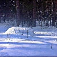 Ах, да тогда была зима... :: muh5257