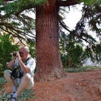 В ботаническом саду :: Виктор Шандыбин