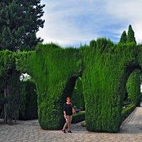 Generalife. Нижние сады#1 :: Mikhail