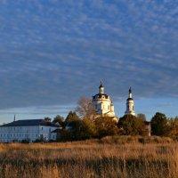 На фоне вечернего неба. :: Алексей Ковынев