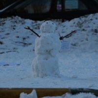 Снеговик :: Николай П