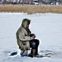 рыбак :: Ольга Cоломатина