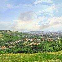 Вид на город Саратов :: Андрей Ситников