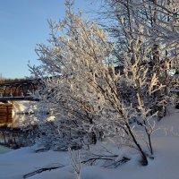 Провожая зиму :: Ольга