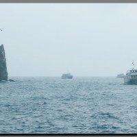 Крым.  Серый,  дождливый  день. :: Ivana