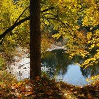 Озеро, осень :: Фролов Владимир Александрович