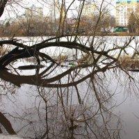 Мартовская фотозарисовка. :: Борис Митрохин