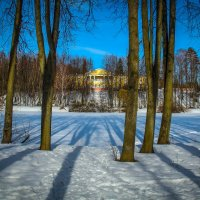 Длинные, длинные тени. :: Александр Валяев