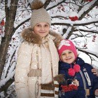 Зимние грозди рябины :: Юлия Шишаева