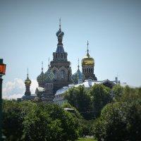 Лето, солнце и Петербург :: Сергей Клюев