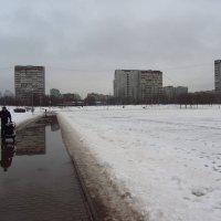 Март обыкновенный :: Андрей Лукьянов