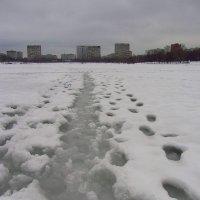 Мой путь :: Андрей Лукьянов