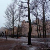 Хельсинки, р-он Каллио :: Ирья Раски