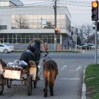 Закон есть закон :: Андрей Майоров