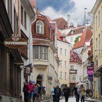 старый Таллин :: ник. петрович земцов