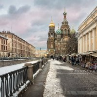 Собор Спаса на Крови зимой :: Юлия Батурина