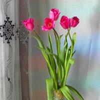 Цветы к празднику. :: nadyasilyuk Вознюк