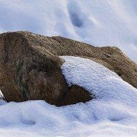 Весенний камень :: Александр